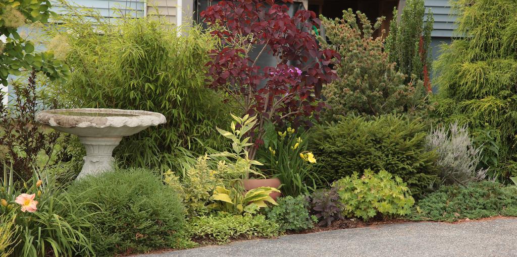 Fortnam gardens love those shrubs mightylinksfo