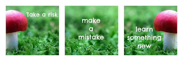 take a risk make a mistake learn something new
