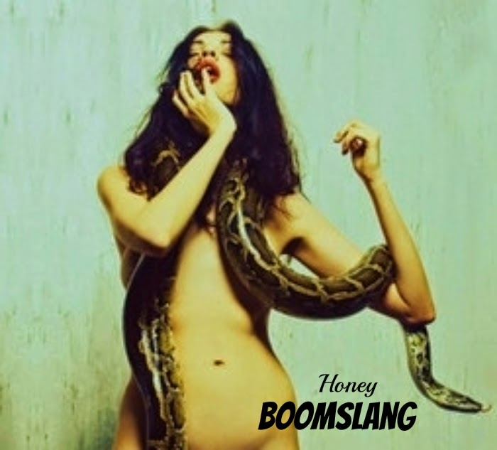Honey BoomSlang