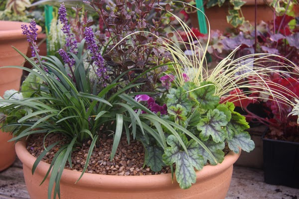 How to make Autumn Winters Pots and Containers