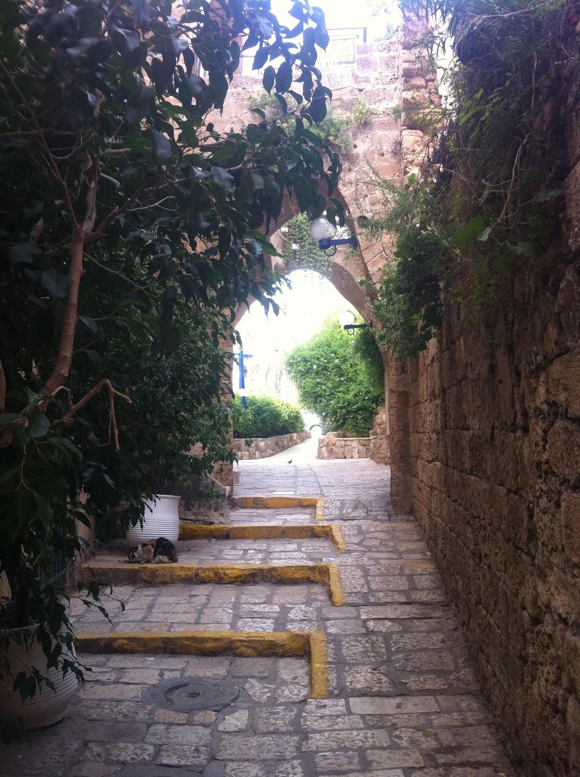 Tel-Aviv y Jaffa | Ajonjolí de todos los moles
