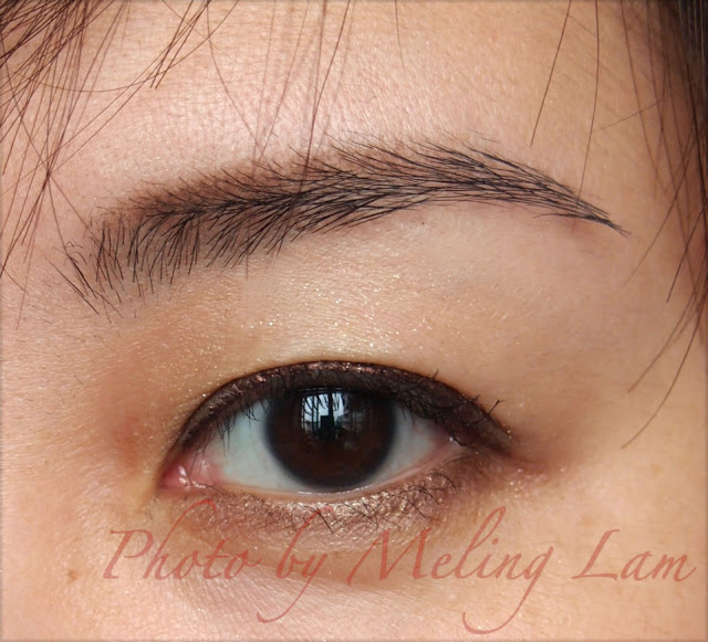 burberry trench coat brown color eye makeup mascara eye shadow eye liner ipsa loreal lunasol revital cyber color ing blush brush 啡色眼妝