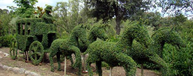 Ocios o s madrid el bosque encantado un jard n propio for Jardin botanico el bosque encantado
