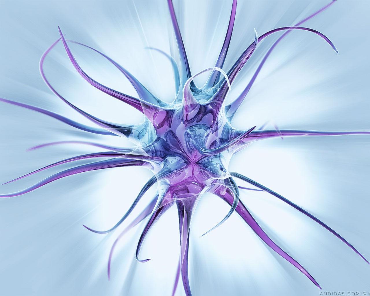 gotasdeduchacida: Gotas de neuronas obsesivas