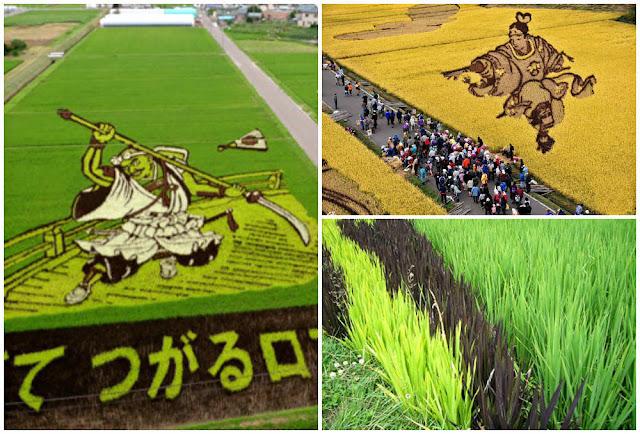 Arte arrozales Inakadate