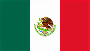 6.- COORDENADA 21 - PUEBLA - MÉXICO - MIEMBRO ASOCIADO CIDI