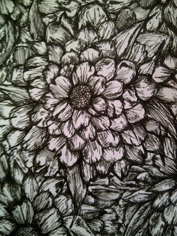 Flowers -various