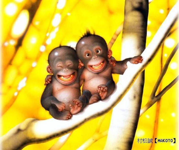 Funny Monkey Family Pictures 2013 Funny Images Show
