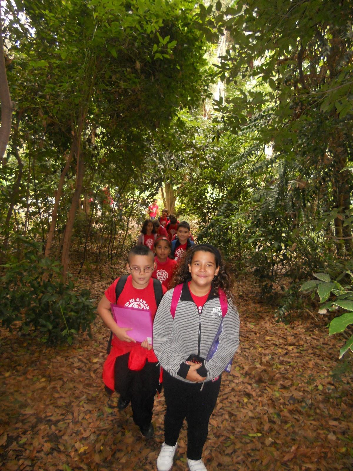 Aprendiendo en el ceip el canario visita al jard n canario for El jardin canario