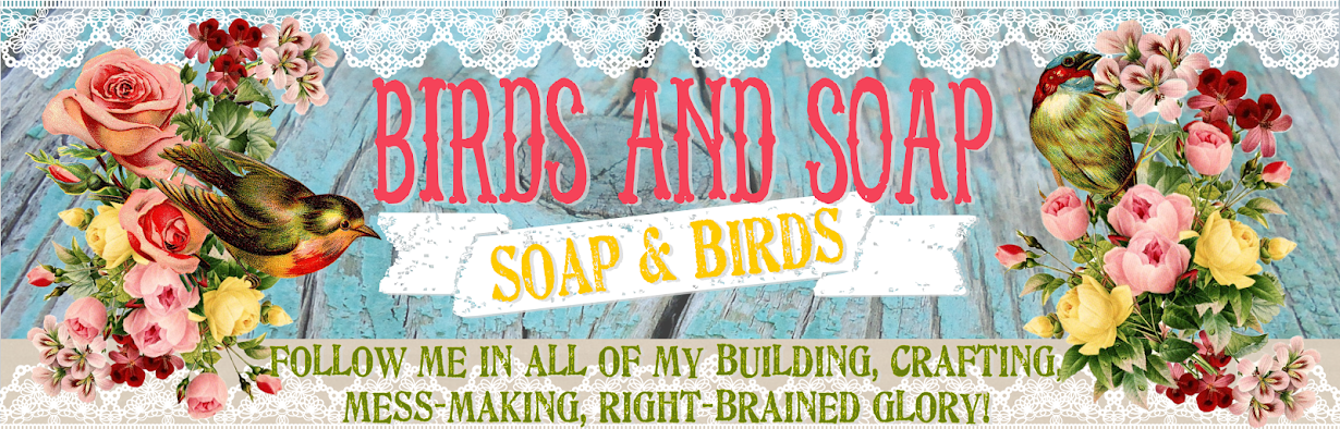 Birds and Soap, Soap and Birds