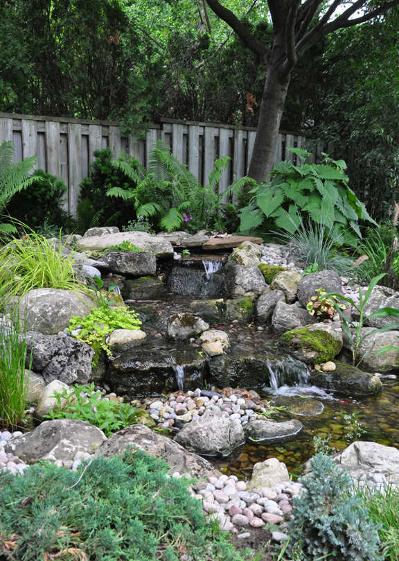 Three dogs in a garden pin ideas small water features for Waterfall features for ponds