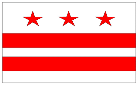 DC South Flag