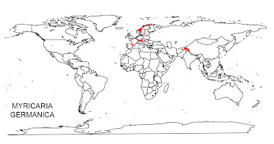 Nice Species Distribution Maps with GBIF-Data in R