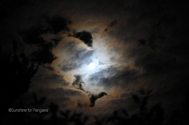 Photo of the moon with an intensive colored corona