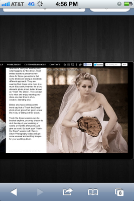 Screen capture of pirated Lisa On Location Photography bridal trash the dress photograph.