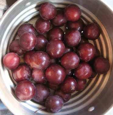 too many plums