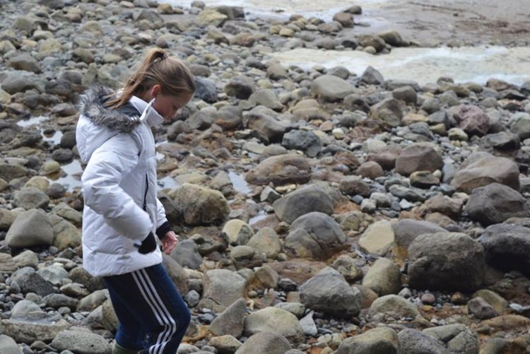 Huia rocky shore