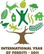 Ano Internacional das Florestas