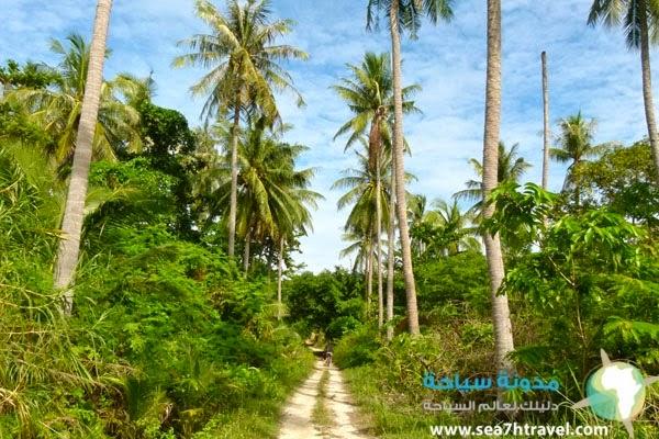 جزيرة رشا في بوكيت