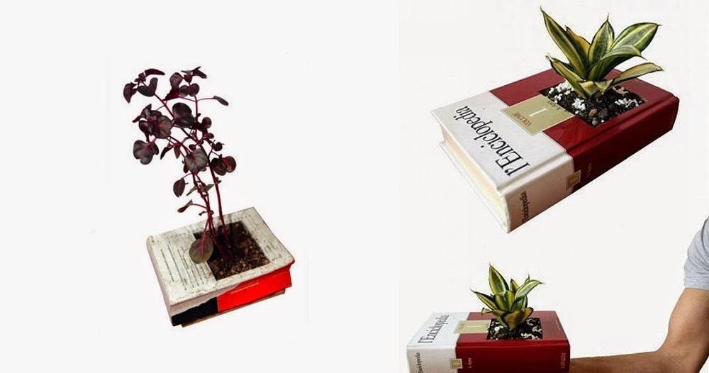 красивые картинки библиотеки книг