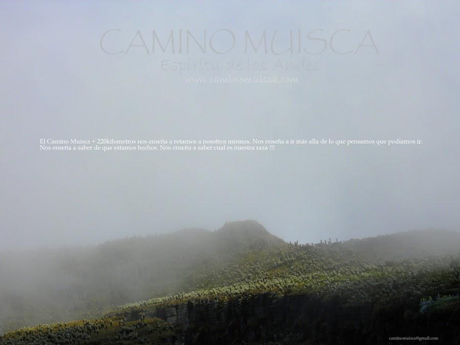 CAMINO MUISCA