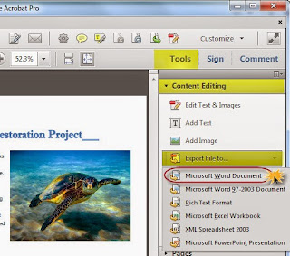 Content Editing, Export File to, Microsoft Word Document