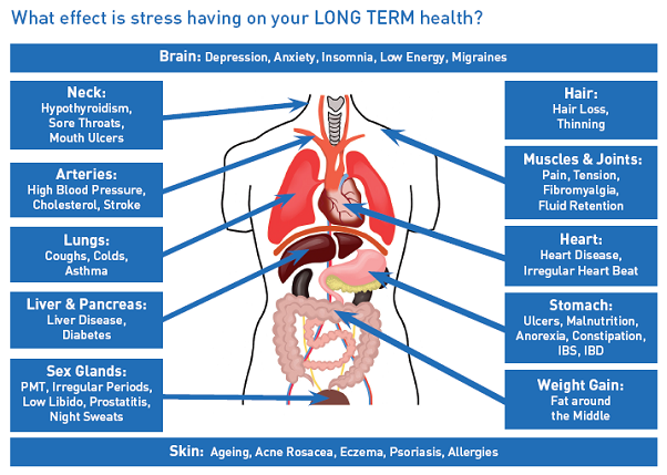 U.S. Stress Levels High -- Living Scared, Going Broke, and Dying for ...