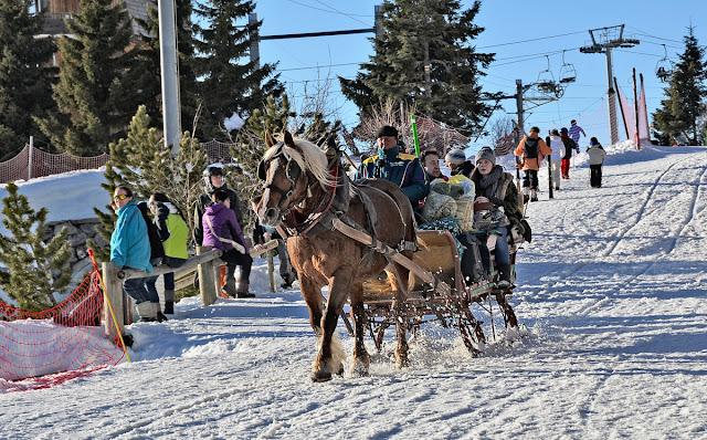 Авориаз фестиваль курорт горные лыжи горы солнце снег кони сани упряжки бубенцы