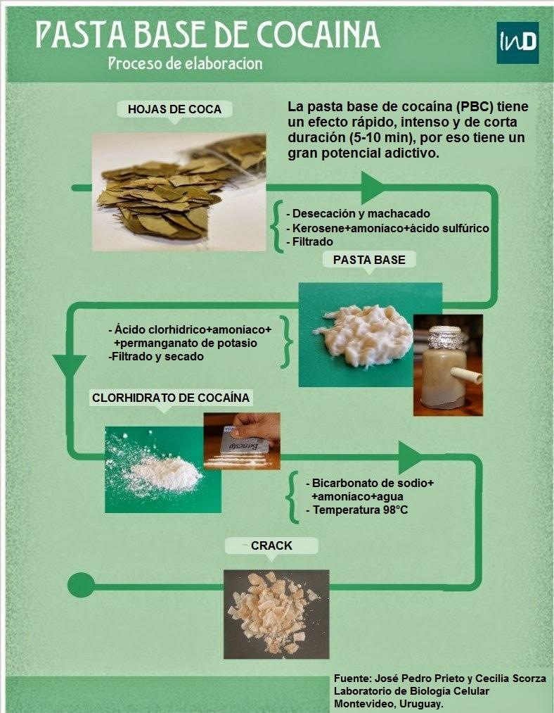 proceso de elaboración de la cocaína