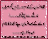 hazrat ali urdu aqwal-e-zareen, islamic urdu aqwal, aqwale ali