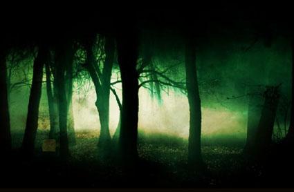 http://3.bp.blogspot.com/-Tjr_mAJg5Yw/VlJxFH8S8DI/AAAAAAAAj-Q/DBE60v1Fkw4/s1600/alien-forest.jpg