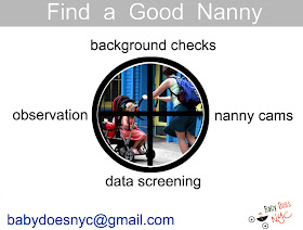 Nanny Monitor Services