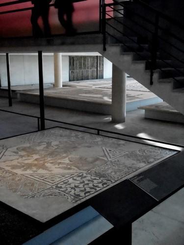 Visiteurs - Musée Bleu