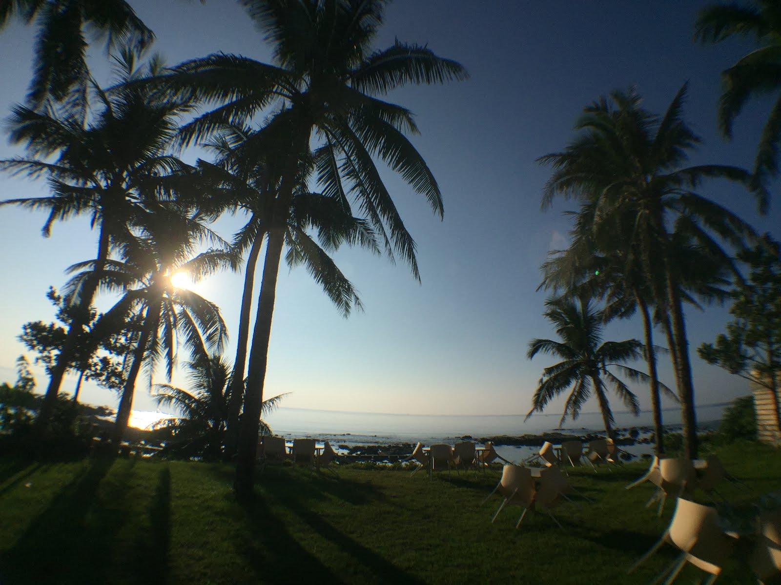 清晨的庭園