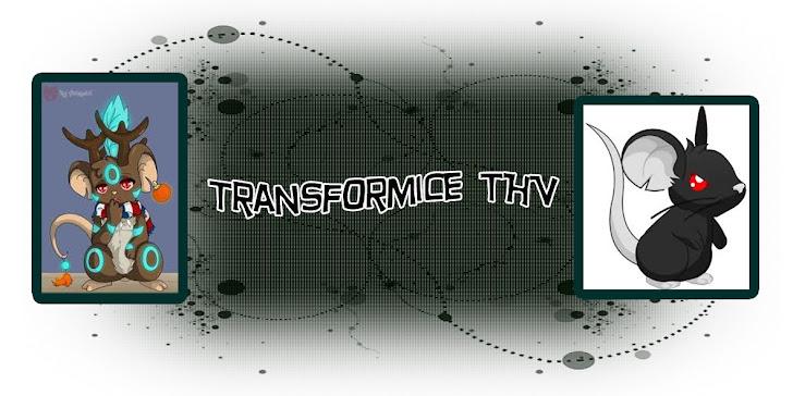 Transformice THV