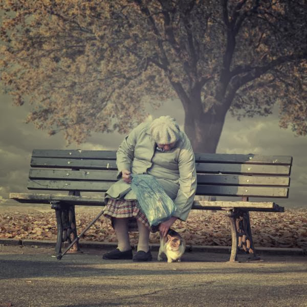 Stunning Photography by Caras Ionut