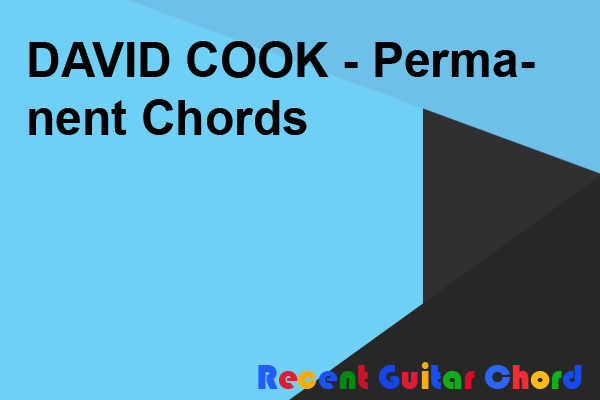 DAVID COOK - Permanent Chords