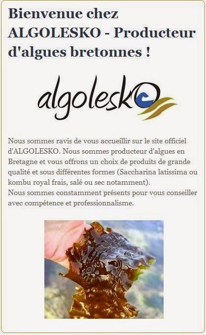 http://www.algolesko.com/fran%C3%A7ais/