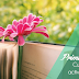 Recursos: Cuentos sobre la primavera y propuesta de actividades para Educación Infantil