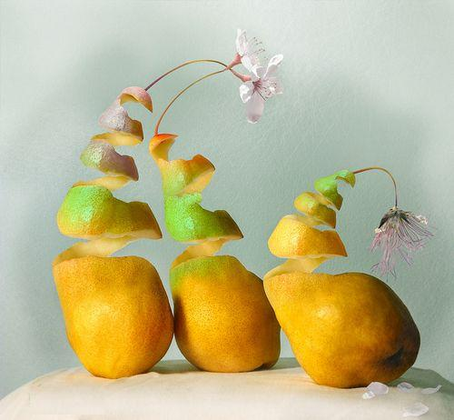 Creative Fruits - Amazing Photos...
