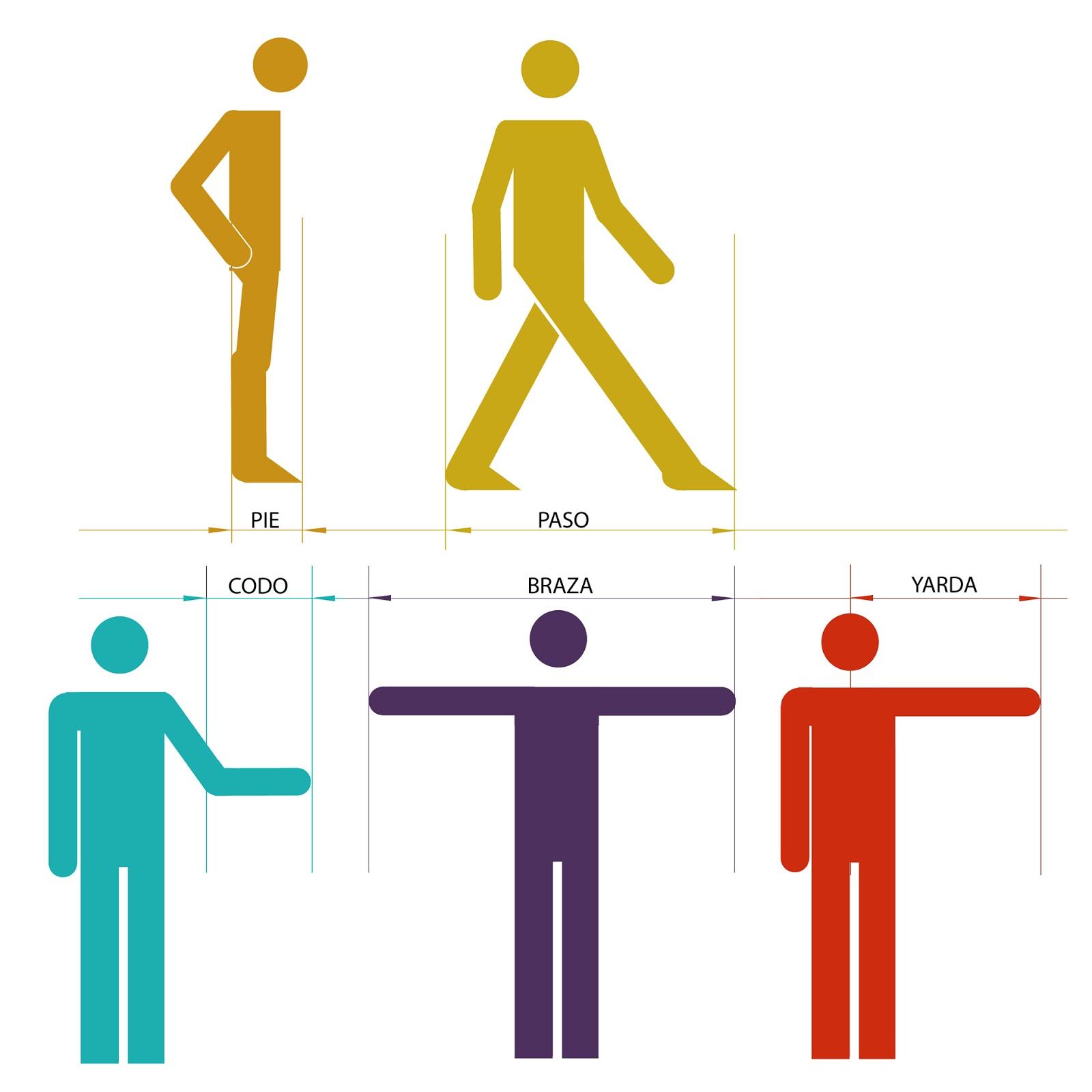 antropometrias, infografia