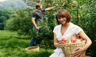 22 Fakta Menarik Tentang Buah Apel