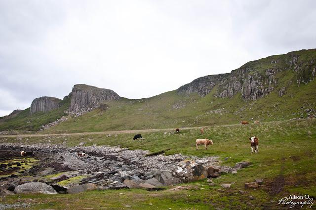 Isle of Skye Scotland Écosse