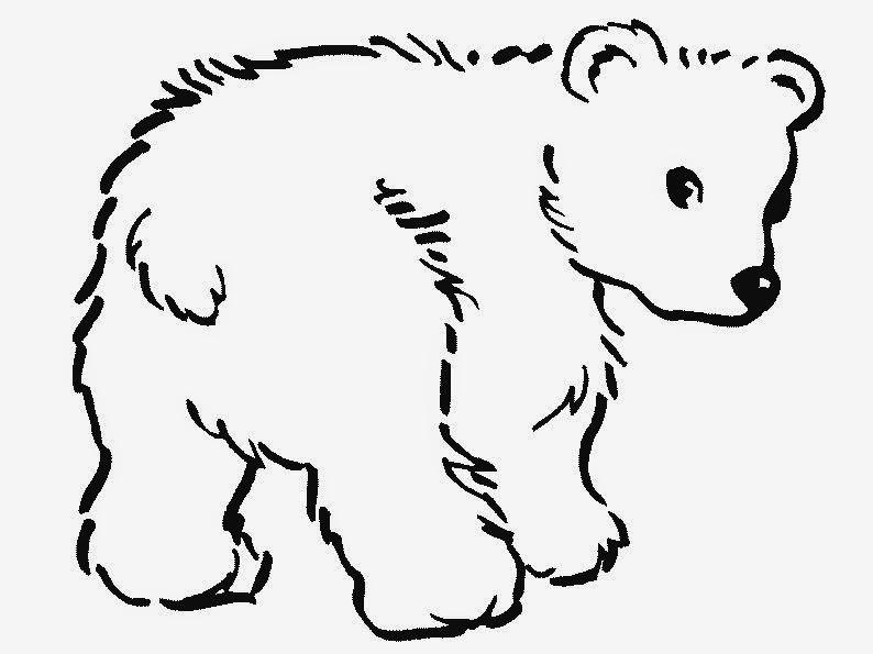 Dibujos de animales para colorear ~ Dibujos para Niños
