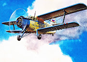Antique Soviet/Russian Airplanes (russian airplane )