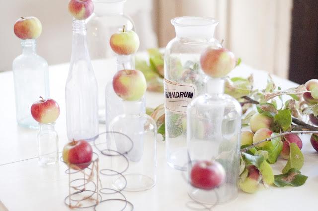 apples in #autumn #fall www.vintagewhitesblog.com