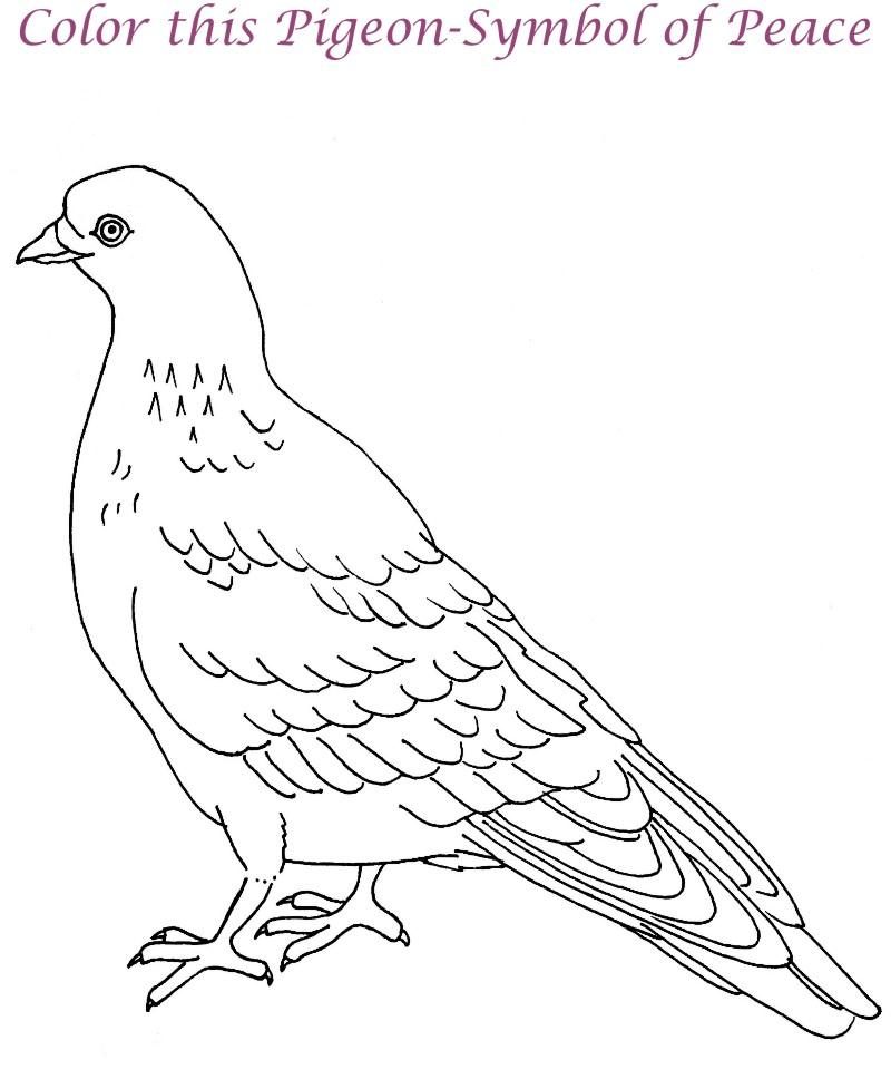 Animals Coloring Pages Picture