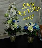 SNY kevät 2017