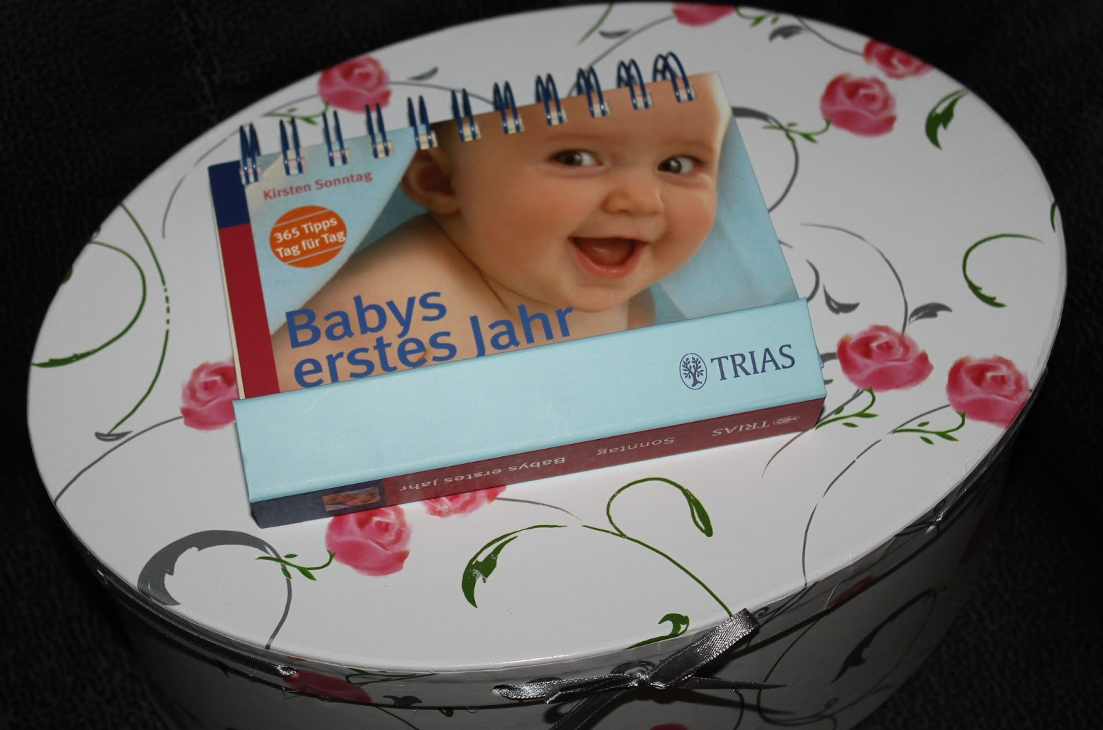 babys erstes jahr 365 tipps tag fr tag