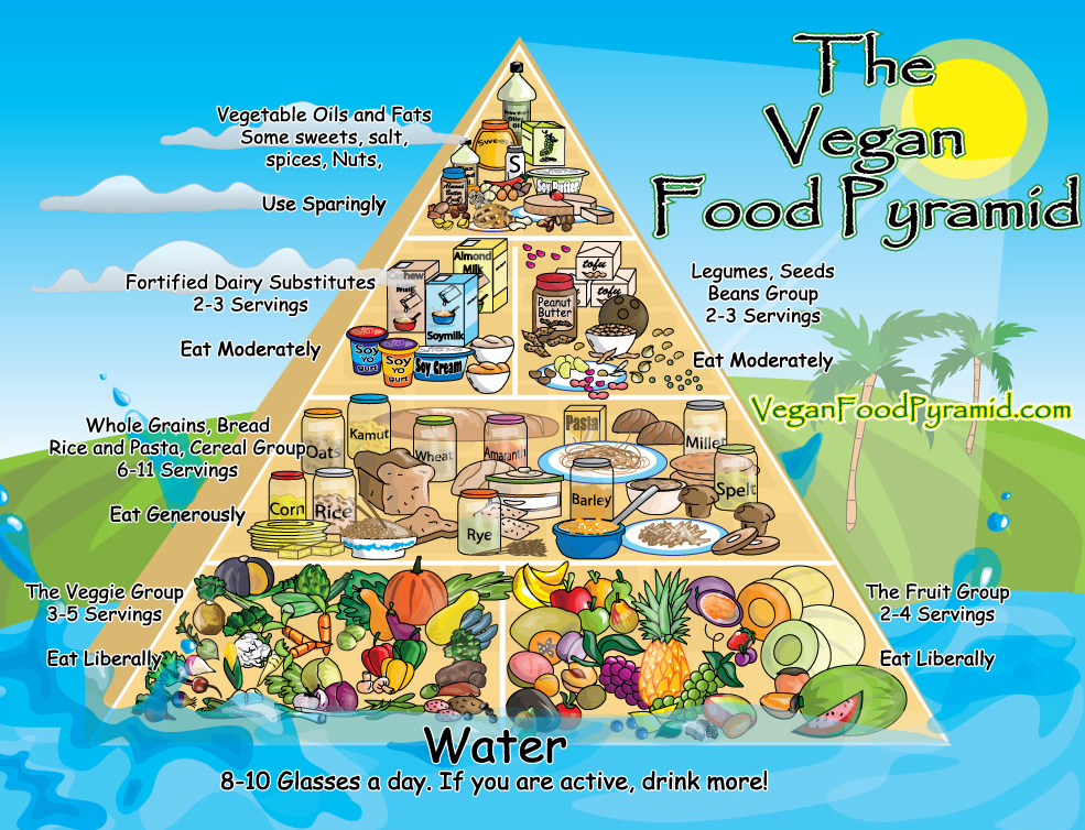 Vegan Food Pyramid & Feeding Your Kids